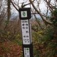 1158宇津ノ俣峠