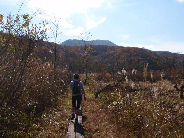 沼の原湿原と毛無山