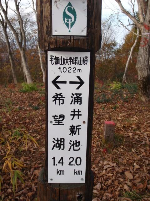 1254毛無山(1022m)頂上