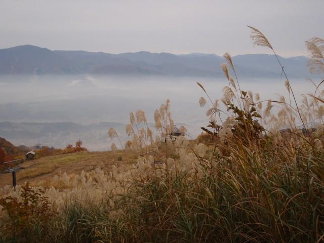 南斜面の山と盆地