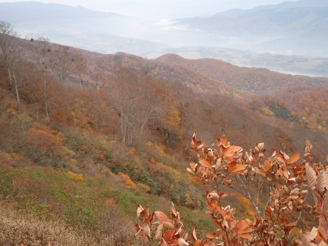千曲川側;里山は紅葉