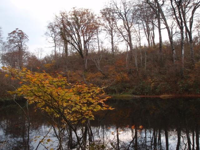1223幻の池