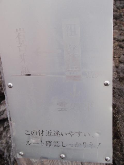 P8010726