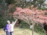 20101107daibosatsu7