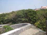 20110207shuri14