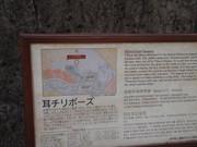 20110207shuri21