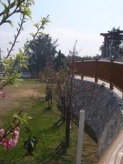 20110207shuri6