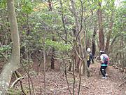 20111029nakayama3