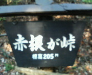P1000283